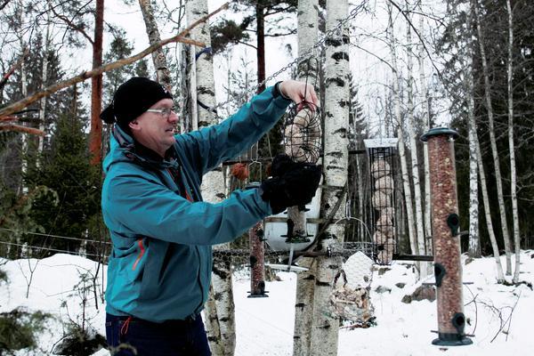 Staffan Liljeqvist fyller på talgbollar till småfåglar. Bilden är från en artikel i Fagersta-Posten i januari 2016. Bild: Lina Svalbro