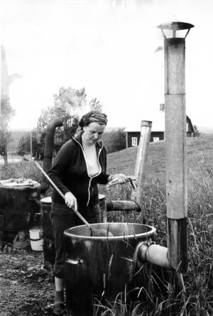 Men Solveig Österbergs intresse för växtfärgning medförde att verksamheten växte.