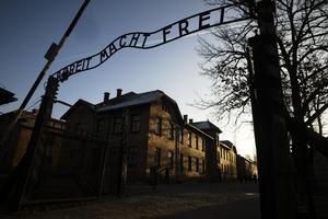 Till Auschwitz, Nazitysklands största koncentrations- och förintelseläger, fördes Maria Wojewódko.