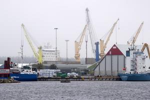 Naturskyddsföreningen ska diskutera hamnens expansion i dag, lördag 23/11