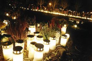 Fackeltåg på Längbro kyrkogård blir det även detta år. Foto: NA arkiv/Anna Mendelsson