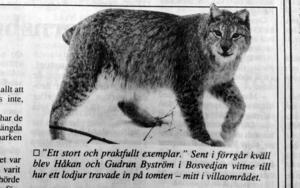 ST 12 februari 1993.