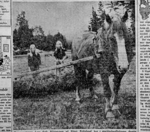 ST 24 juli 1968.