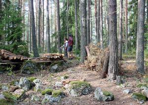 Bild på Michael Beutlers bollbana genom Råbyskogen.