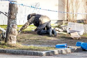 Nationella bombskyddet var på plats för att undersöka resterna av bomben och för att leta efter odetonerade sprängladdningar.