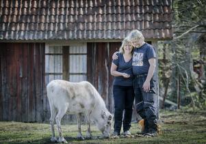 Gunilla Larsholt och Johan Molin med en av renarna. Bilden är tagen vid ett besök av NA tidigare i våras. Ett större reportage om Hallagårdens djurpark kan du läsa redan i morgon på NA.se.