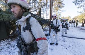 Svenska pansarsoldater under Nato-övningen Trident i höstas. Foto: Heiko Junge/TT
