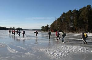 Med rejäla stavtag försvinner en av grupperna ut på Gysingefjärden i Nedre Dalälven.