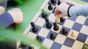 Fler än 200 elever spelar schack varje vecka. Här har satsningen gått hem.