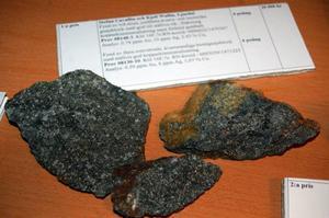 Ettafyndet som Stefan Cavallin och Kjell Wedin hittade i Känne.