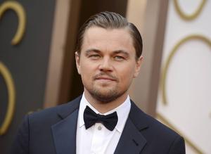 Leonardo DiCaprio. Arkivbild.   Foto: Jordan Strauss/AP/TT