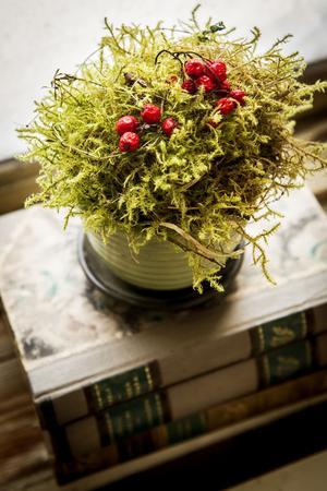 Lite mossa i en kruka och några röda bär blir en enkel och effektfull dekoration.