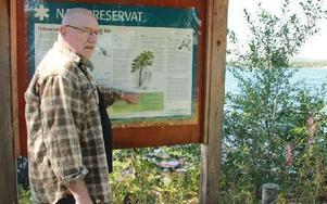 Charlie är kritisk mot att kommunen avverkat värdefulla träd i ett naturreservat. Foto: Sylvia Kjellberg