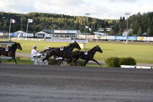 Nuncio var storfavorit i Sundsvall Open Trot – och höll för pressen.