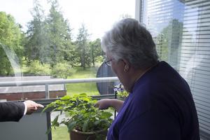 Balkongen är Margareta Erikssons favoritplats. Hon passade på att visa kommunalråd Sven-Erik Lindestam hennes odling av physalis.