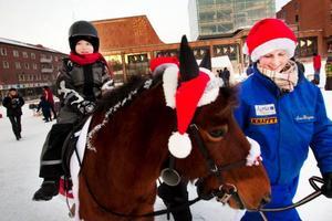 """Tomtens tama renar fanns som sig bör på plats på torget. Men ibland var de bestämda och lät sig inte klappas hela tiden. Då räckte det med att beskåda dem.""""Jag gillar hästar, många av grannarna hemma har hästar"""", sa Jonas Hedman, 5,5 år från Åspåsnäset, från ponnyns rygg. Och sedan skulle han träffa tomten och berätta att han önskade sig en radiostyrd monstertruck i julklapp."""