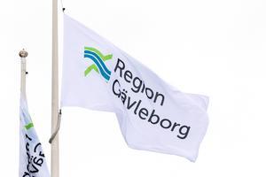 Logotypen är tvåfärgad i blått och grönt i stället för enhetligt röd.