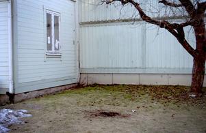 Flera fönster har spräckts och träden bär spår av splitterskador.