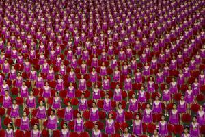 Ungefär 150 000 människor deltar i uppvisningarna under festivalen och allt sker perfekt synkroniserat.