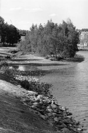 Vattennivån i Lillfjärden sjönk med drygt en halvmeter i juli 1994.