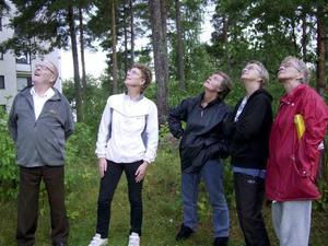 oroliga för katten. Många grannar har engagerat sig i katten som har blivit uppskrämd i ett träd i Sätra. Här syns Harry Karlsson, Anna Blomqvist, Christina Mörk, Ulla Karlsson och Lena Winbladh Dahlqvist.