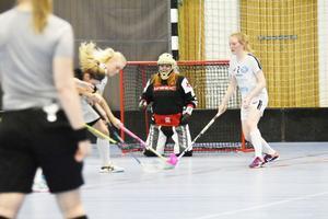 Sandra Näslund fick se fem bollar passera in i målet.