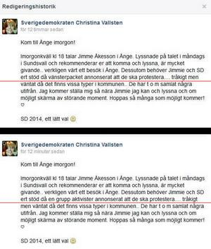 Sverigedemokraterna benämnde sina politiska motståndare som