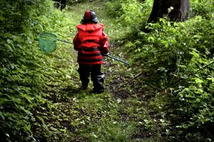 Snok på äventyr. Natursnokarna har varit ute på många äventyr i naturen runt om Askersund. ARKIVBILD: ANNA RYTTERBRANT