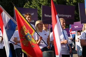 Det långa tåget med ekipage med flaggor och landsskyltar ringlade sig lång på Nygatan.