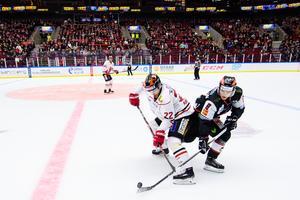 Bild: Petter Arvidson/Bildbyrån