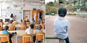 Rektorn på den berörda skolan har beslutat om reducerad skolgång för den nioåriga pojken.