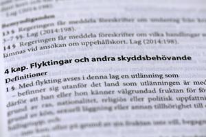 Ur svensk lag. Foto: Janerik Henriksson / TT