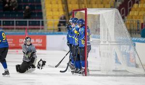 Målvakten Andrey Rein storspelade i det kazakiska målet. Foto: Rikard Bäckman / Bandypuls.se / TT