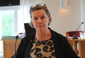Caroline Schmidt (C) berättade om målet, som ska vara fiber till landsbygden.