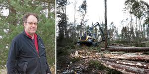 Kjell Andersson, skogskonsulent  på Skogsstyrelsen och boende på Väddö, uppmanar folk att ta det försiktigt i röjningsarbetet.  Foto: Joakim Dahlbäck