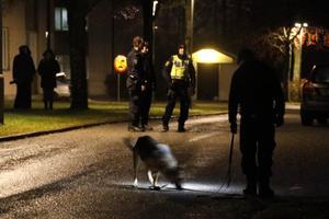 Kriminalitet följer en logik som förefaller galen för oss andra. Men det är ändå en logik. På bilden: Polisens spaning efter skottlossningen på Hagaberg i Lindesberg.