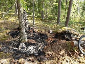 Bild från branden efter att den har släckts.  Foto: Anders Jonasson