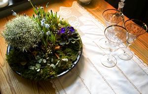 Det var vårdis om inspirerade Ulla till det här blåtonade arrangemanget på ett stort glaserat blått blomfat med mossa i botten. Den runda grå bollen är en curryeternell med små ljusblå pärlhyacinter framför tillsammans med lyktranka, mini saint paulia och lite vit brudslöja. Foto:Johan Solum