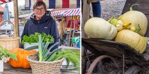 De nyskördade grönsakerna gick åt snabbt när Fagersta - Västanfors hembygdsgård bjöd in till höstmarknad.