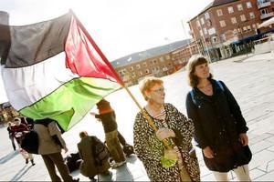 Inga-Karin Begman höll i den Palestinska flaggan under manifestationen.