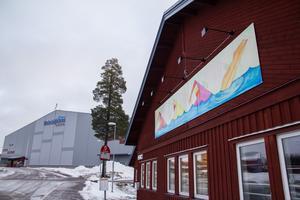 Aquarena har smyckats med en målning som berättar om aktiviteterna i byggnaden.