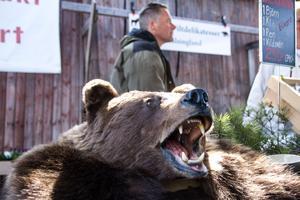 Ett uppstoppat björnhuvud lockade många nyfikna blickar.