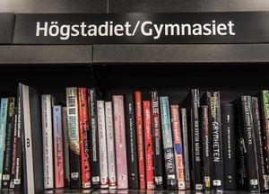 I dagarna har Örebros niondeklassare val vilken gymnasieutbildning de vill gå. Foto:  Tomas Oneborg/TT
