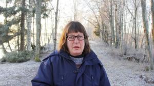 Elisabeth Nilsson, 65+, it-branschen, Ljustorp.