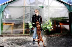 Hos Marie Gunnarsson i Västerkälen kan finsmakare få tag på många ovanliga sommarblommor som generellt kan vara lite svåra att få tag i, som Fjärilskrasse, Trumpetblomma och Guldoxalis. Hunden Alice gillar att vara med.