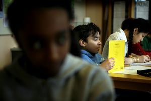 Om merparten av eleverna i en undervisningsgrupp inte har de förkunskaper som krävs tvingas läraren att undervisa på svenska och det blir något helt annat än modersmålsundervisning.