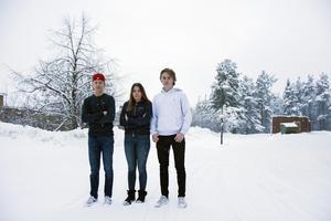 Olle Grönroos, Elin Magnusson och Elliot Timander är tre av eleverna på Geneskolan som tycker att de borde få parkera sina mopedbilar på den den tomma mopedparkeringen.