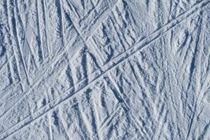 I år kom skidsäsongen två veckor tidigare än ifjol på Skyttis.