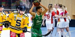 Södertälje är en stark idrottsstad. SSK ligger på slutspelsplats i ishockeyallsvenskan, Kings är regerande svenska mästare och Telge är ett topplag i innebandyallsvenskan.
