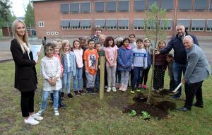 Utnämningen avslutades inför hela klassen med att Rotarys Bengt Åkman och Tomas Rudh planterade Vårdträdet, kunskapens träd. Gisela Nilsson till vänster. Foto: Jan-Olov Schröder